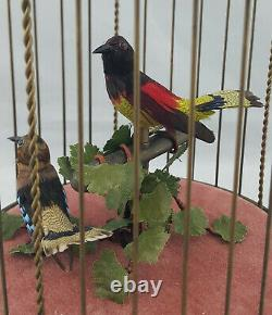 Reuge Singing Birds The Art of Mechanical Music Switzerland Working Order Boxed
